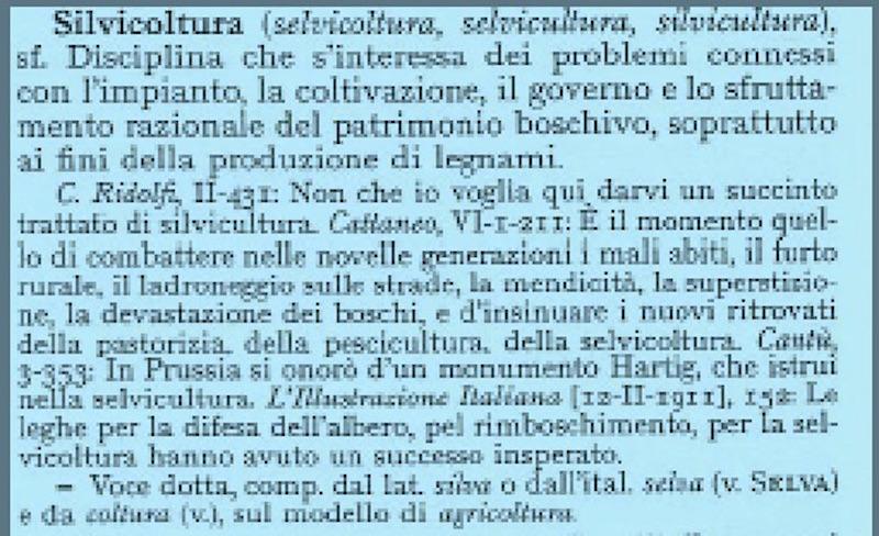 Selvicoltura S. Battagli