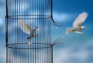 Liberazione: Confiance en soi.