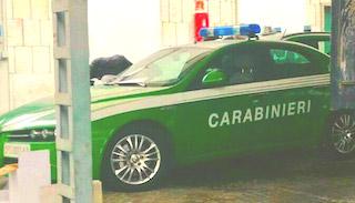 Forestal-Carabinieri distinguibili per le vetture color pisello e per il cambiamento del logo. Notevole risparmio sulla verniciatura della carrozzeria, conformemente all'esigenza di contenere i costi di accorpamento all'Arma.
